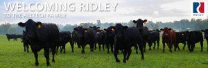 ridley-alltech-family
