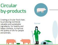 dierlijke grondstoffen