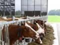 Landbouw Collectief